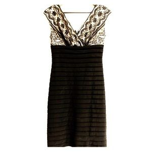 Adrianna Pappell black bodycon and lace dress